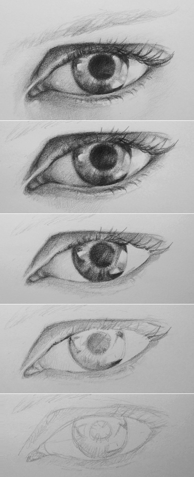 Step by Step Drawing of the Human Eye