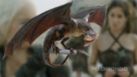 dragon_picture_full